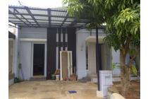 rumah baru renovasi alam sutera