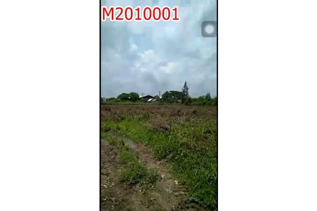 Rp39,2mily Tanah Dijual