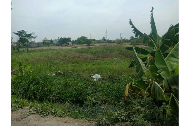 Rp11,3mily Tanah Dijual
