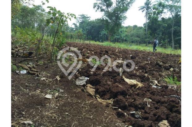 Tanah Murah Dijual Bekasi Juara Kelas Di Cileungsi 13243771