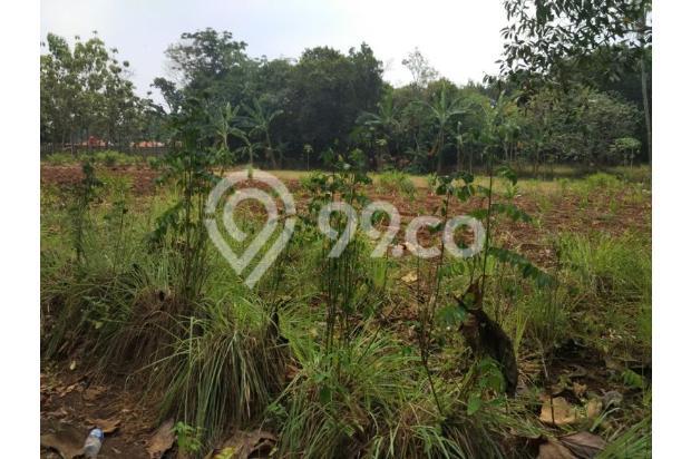 Tanah Murah Dijual Bekasi Juara Kelas Di Cileungsi 13243773