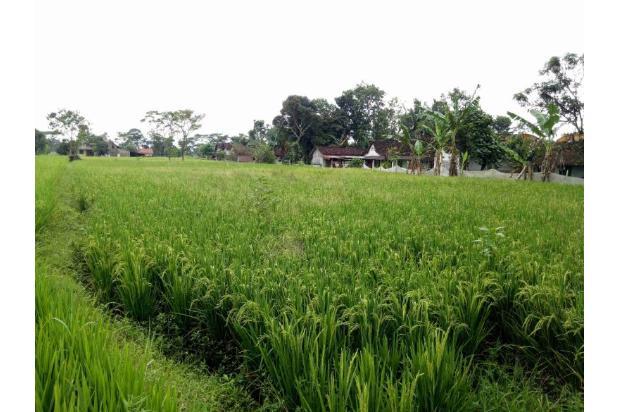 Invest Tanah 2km Exit Tol Klaten, Cicil 12x Tanpa Bunga 17793665