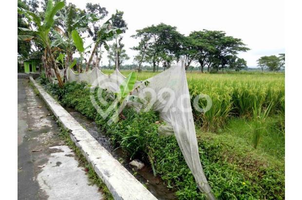 Invest Tanah 2km Exit Tol Klaten, Cicil 12x Tanpa Bunga 17793691