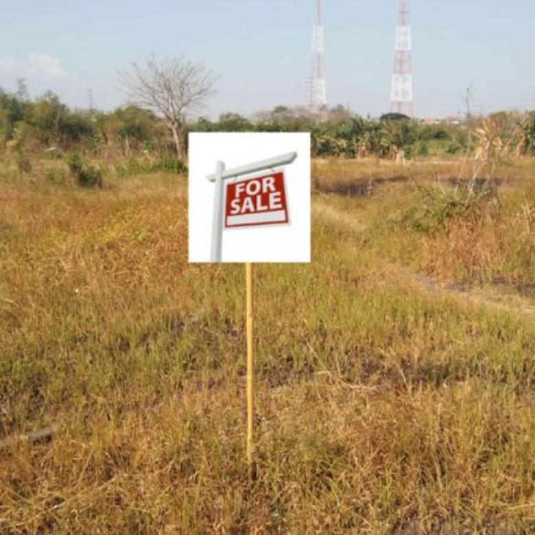 Tanah bulu lontar COCOK untuk perumahan