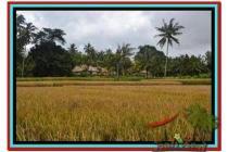 Cantik Super Langka Tanah 3.280 m2 di Ubud Tegalalang E463