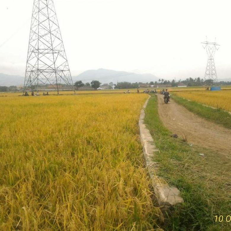 Tanah Produktif di belakang Stasiun kereta Api Haur Pugur