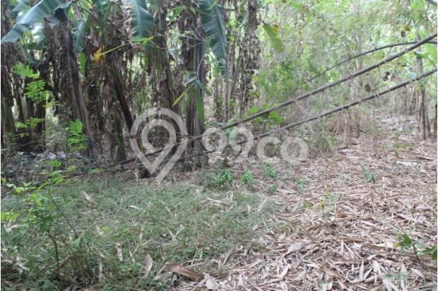 Kami Jual Tanah Kaveling Berstandar Cluster Perumahan Dekat UIN Baru Bantul 12747621