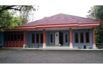 Rumah luas + Kebun Cengkeh di Tegal