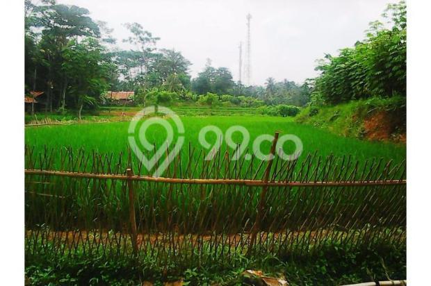 Tanah bagus seluas = 2,100M2 (Cibadak-Sukamakmur) 5408218