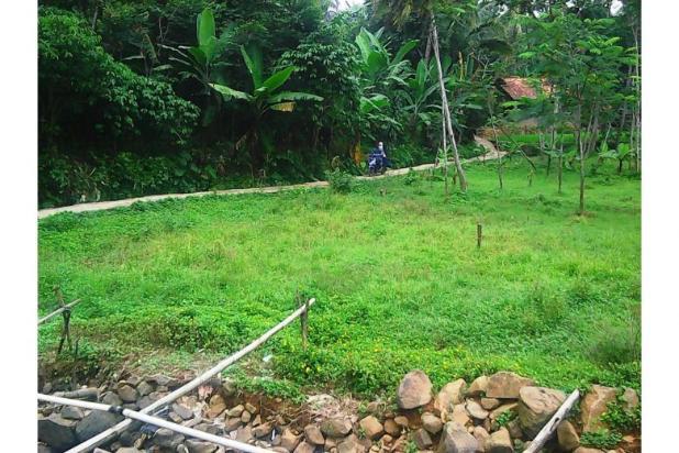 Tanah bagus seluas = 2,100M2 (Cibadak-Sukamakmur) 5408217