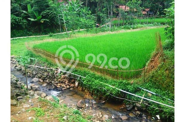 Tanah bagus seluas = 2,100M2 (Cibadak-Sukamakmur) 5408223