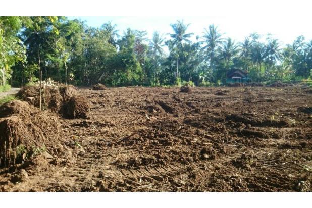 Sitelokasi Wates Kota: Angsuran 12 X Free Bunga 17994809