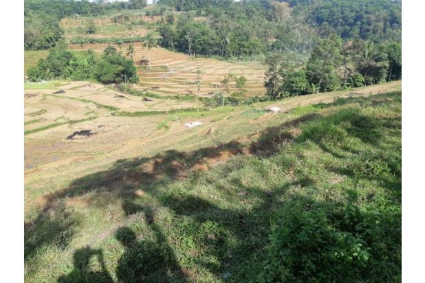 Rp605jt Tanah Dijual