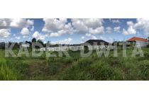 Tanah view sawah lingkungan villa tegal cupek dekat umalas bum