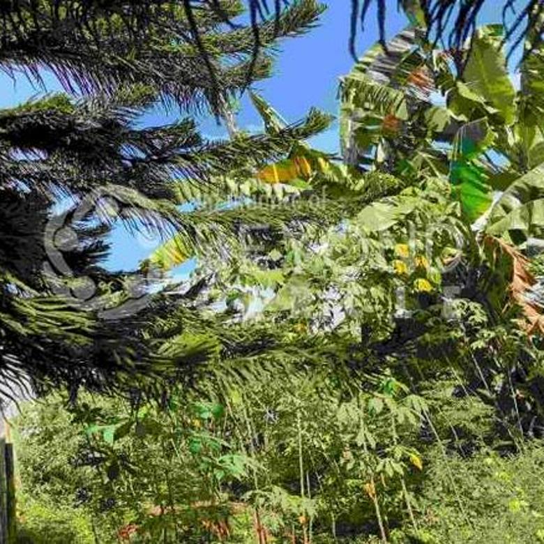 Tanah Kavling Bagus Luas Strategis Di Dago Pakar Permai Bandung