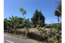 Tanah SHM Pinggir Jalan,Termurah Cocok Bangun Usaha