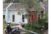 Rumah Asri Quality Garden Residence