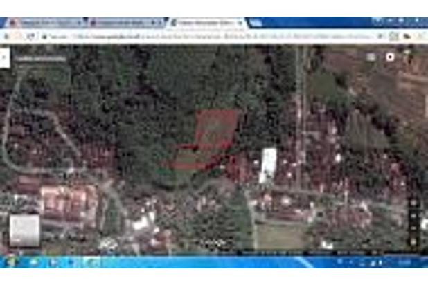 Tanah Kebun Produktif dan Tanah Kavling Pinggir Jalan Bintoro Jember 16510275