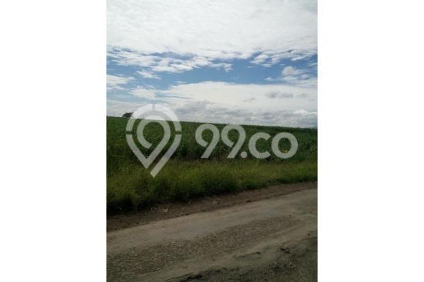 Jual Tanah Nol Jalan di Cilengkrang Tonjong, Cirebon Timur, sgt strategis 10452143