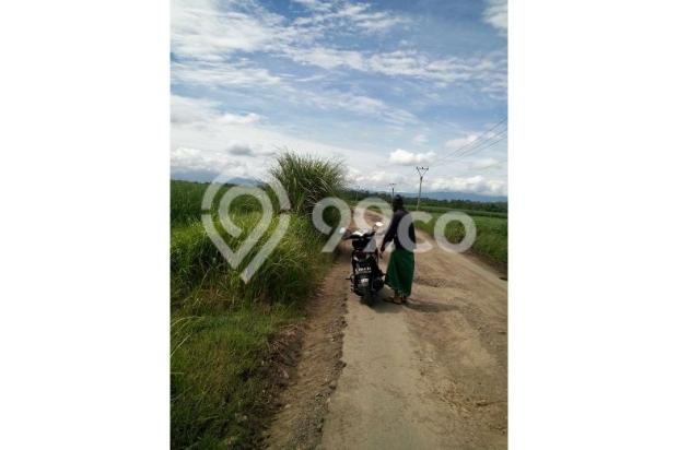 Jual Tanah Nol Jalan di Cilengkrang Tonjong, Cirebon Timur, sgt strategis 10452144