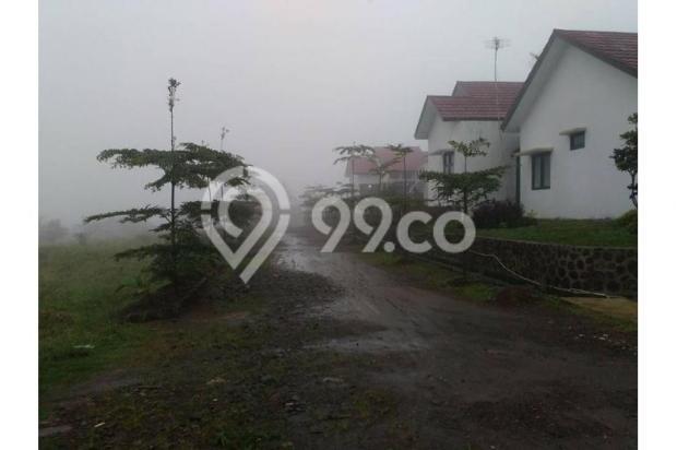 Rumah Villa Best price 9700432