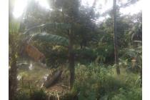 Tanah Industri, Jl Raya Cicadas - Gn. Putri, muka lebar