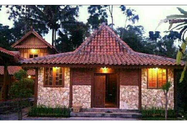 Dijual 1 Rumah Joglo 2 Limasan full furnished,yogyakarta 16226480