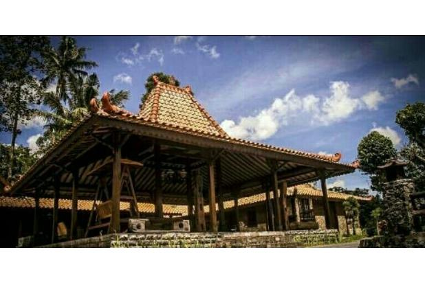 Dijual 1 Rumah Joglo 2 Limasan full furnished,yogyakarta 16226491