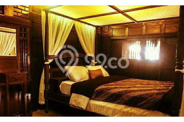 Dijual 1 Rumah Joglo 2 Limasan full furnished,yogyakarta 16226495