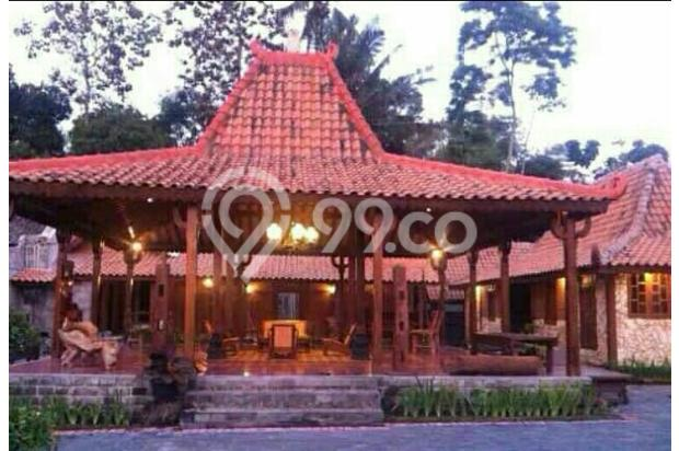 Dijual 1 Rumah Joglo 2 Limasan full furnished,yogyakarta 16226500