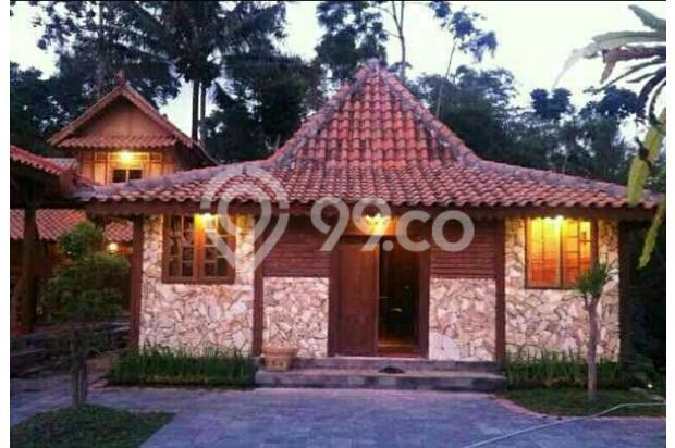 Dijual 1 Rumah Joglo 2 Limasan full furnished,yogyakarta 16226508