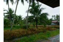 Jual Murah Tanah sei /Sungai Purun / Lintas Kalimantan,  Helen 087885952885