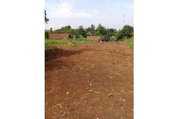 Bayar Tanah Bertahap, 12 Kali, Tanpa Bunga: Bogor 14417069