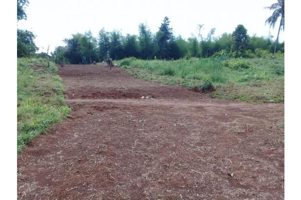 Bayar Tanah Bertahap, 12 Kali, Tanpa Bunga: Bogor 14417078