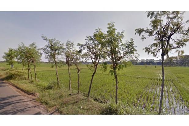 WA 087836460238, Jual Beli Tanah Jaten, Tanah Dijual Jaten 14 Hektar 10221208