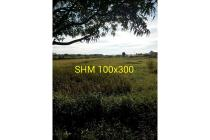 Dijual Tanah SHM 3 ha Untuk Industri & Pergudangan Kutorejo Mojokerto