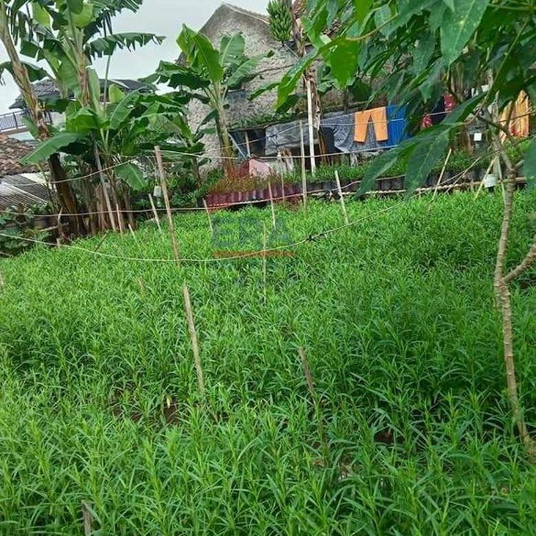 Tanah di Parongpong Lembang Bandung Jawa barat
