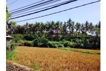 Tanah bypass IB mantra samping Bali safari cocok untuk villa