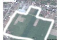 WA 087836460238 (XL), Jual Tanah Bekonang, Jual Tanah di Bekonang