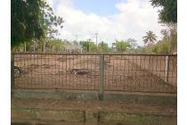 Tanah-Minahasa-2