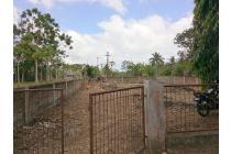 Tanah-Minahasa-3