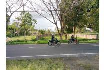 Tanah-Minahasa-6