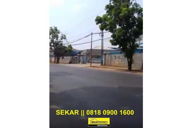 Rp667mily Tanah Dijual