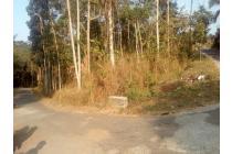 Tanah perkebunan di Magelang, luas 10 Ha