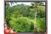 Magnificent, 7.800 m2 View tebing,sawah,sungai ayung di Ubud