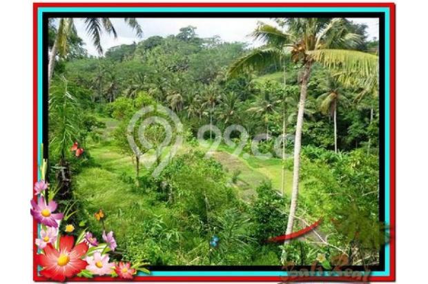 Magnificent, 7.800 m2 View tebing,sawah,sungai ayung di Ubud 3872424