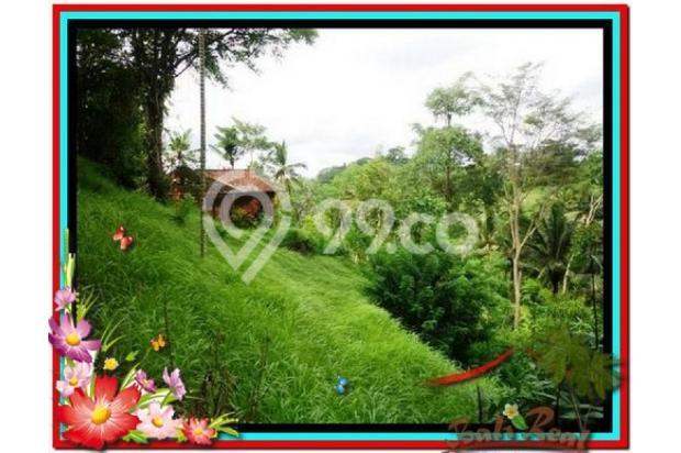 Magnificent, 7.800 m2 View tebing,sawah,sungai ayung di Ubud 3872425