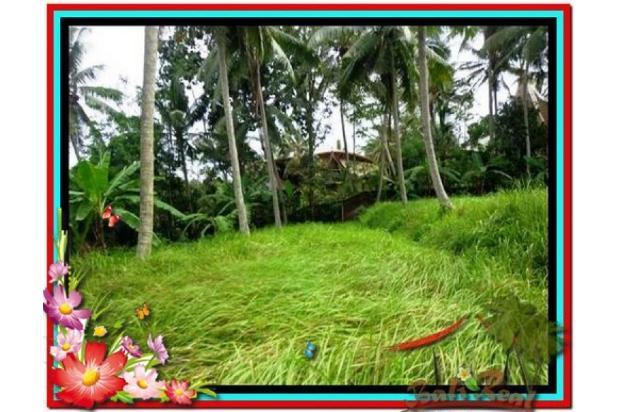 Magnificent, 7.800 m2 View tebing,sawah,sungai ayung di Ubud 3872426