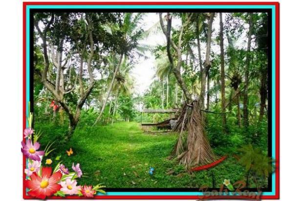Magnificent, 7.800 m2 View tebing,sawah,sungai ayung di Ubud 3872427