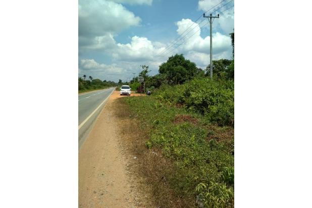 tanah 3.6 hektar, tepi jalan trans kalimantan